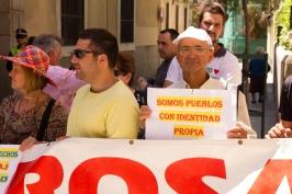 Manifestación 31-05-2015_25