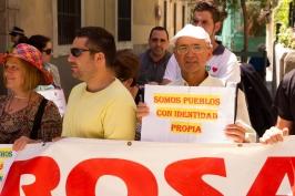Manifestación 31-05-2015_26