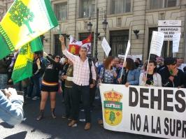 Manifestación Madrid 31-05-2015_6